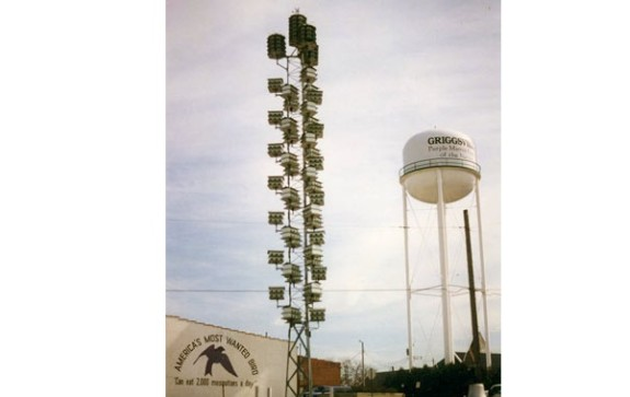 Purple Martin Boulevard, Illinois